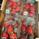 ふるさと納税の返礼品イチゴが届いた