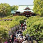 亀戸天神 藤祭り