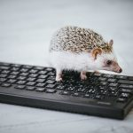 親指シフトマスターで私のネックは会社のキーボード。解決策となりそうな「かえうち」を注文した。