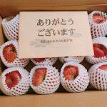 ふるさと納税の返礼品 秋田県湯沢市のりんご『ふじ』が3kgが届いた