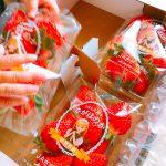 ふるさと納税の返礼品 佐賀県上峰町から『さがほのか』が4パック届いた 還元率は約40%